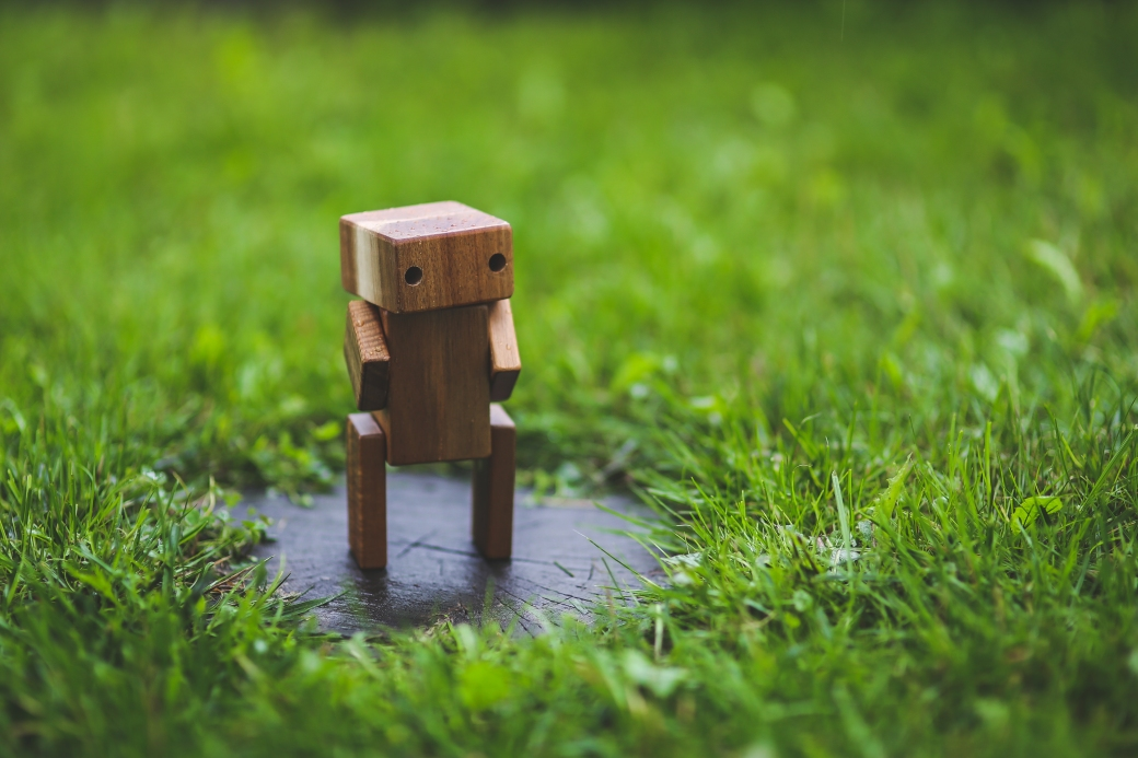 grass-lawn-green-wooden-6069